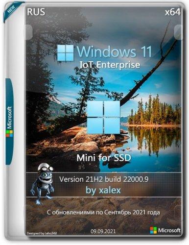 Windows 11 IoT Enterprise Mini 22000.9 for SSD by xalex (x64)