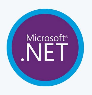 Microsoft .NET 5.0.10